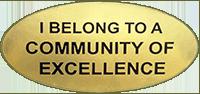 CAA 2008 Excellence award sticker
